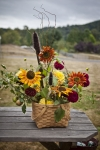 Informal style basket of garden sunflowers and dahlias