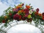 Vibrant wedding arch