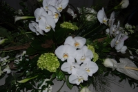 White casket arrangement